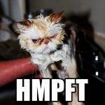HMPFT2